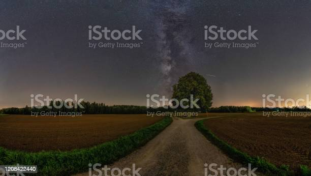 Photo of The milkyway over a lonely tree with much copy space.