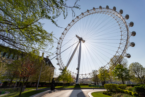 A street level view of the Millennium Wheel from Jubilee Gardens. London, England - 15 April 2020