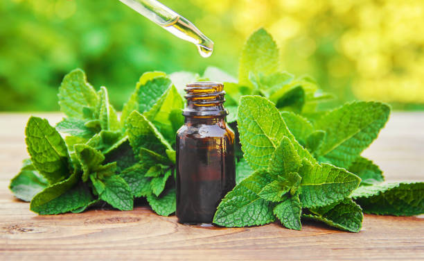 The mint extract in a small jar. Selective focus. The mint extract in a small jar. Selective focus. herbal medicine stock pictures, royalty-free photos & images