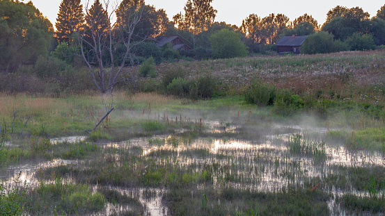The mist rises over the marsh at dusk in the countryside