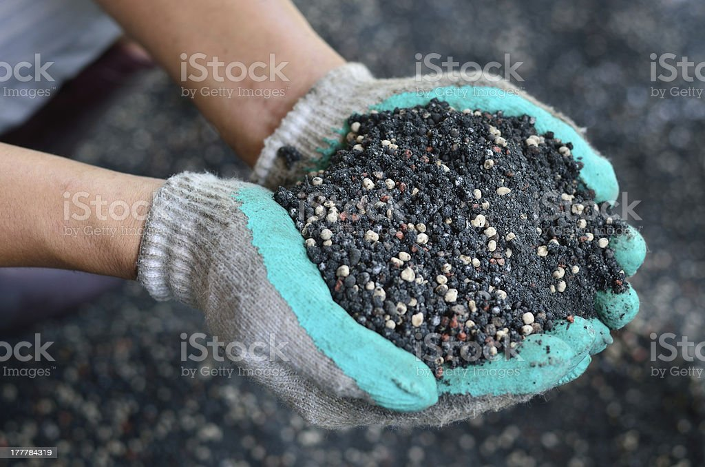 The mixed of plant chemical fertilizer stock photo
