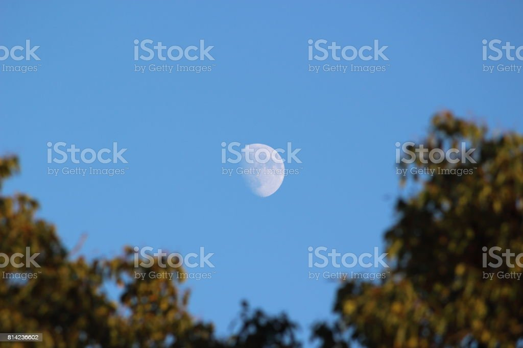 The moon in daytime. stock photo