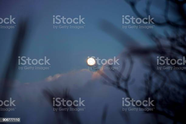 Photo of The moon in forest at evening time. , grass are foreground, beautiful and shinny on sky
