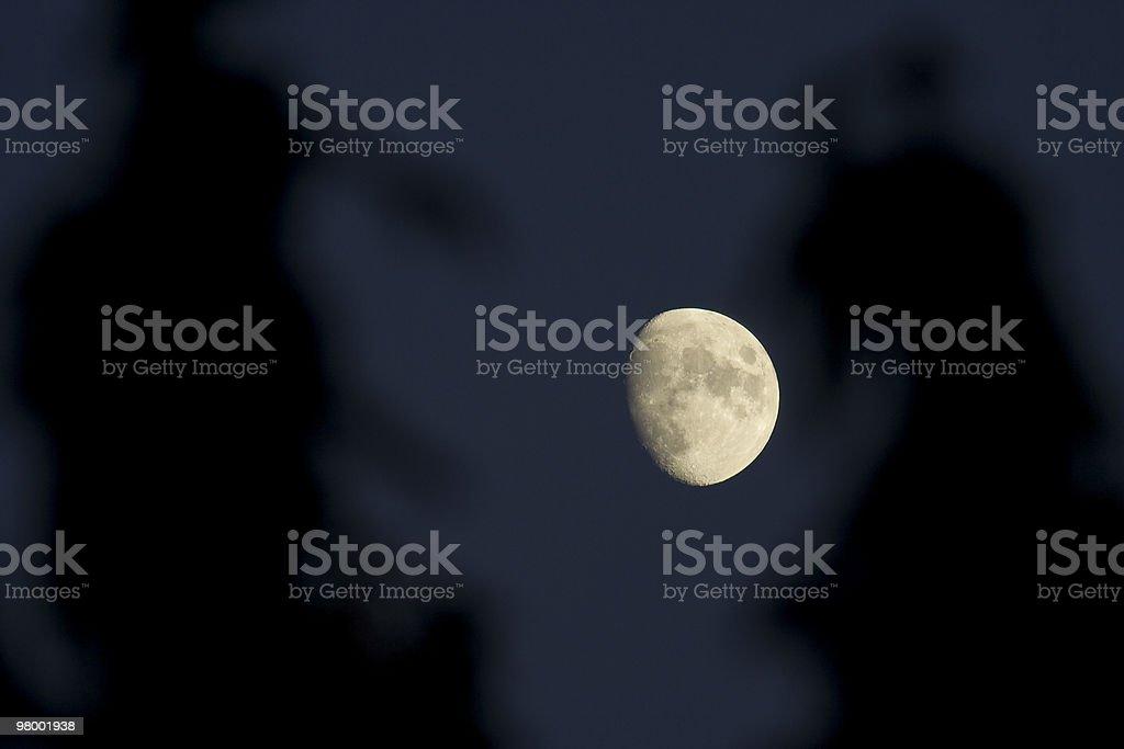 The Moon royalty free stockfoto