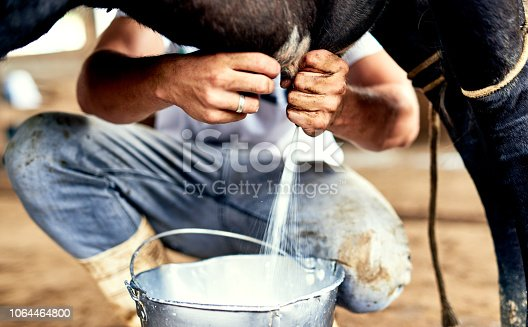 Cropped shot of a male farmer milking a cow