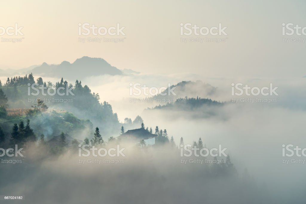 The morning mist​​​ foto