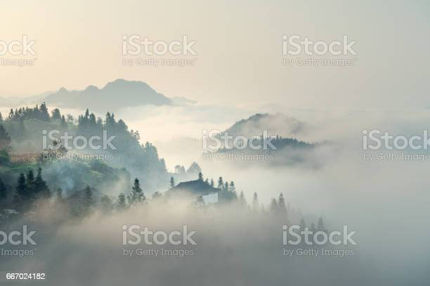 Photo of The morning mist
