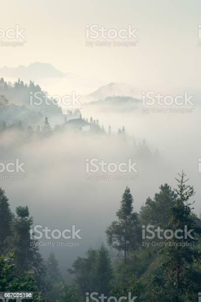 The morning mist picture id667025198?b=1&k=6&m=667025198&s=612x612&h=vk61fy3ad5n ylpw7184sosbbbe c7yfacbd9owfhte=
