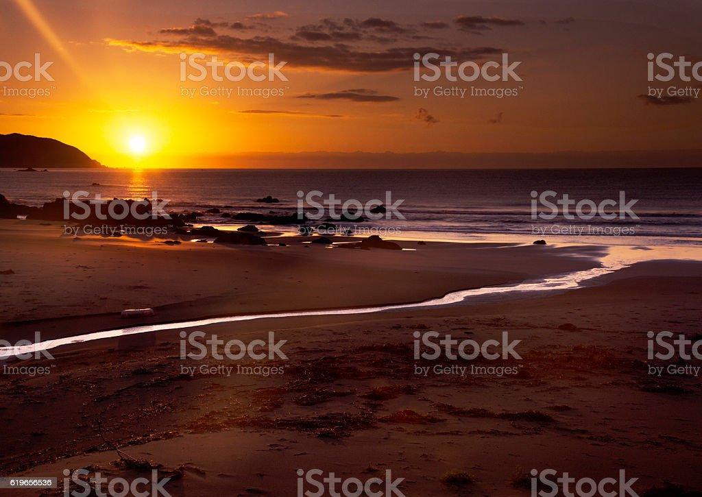 The morning sun stock photo