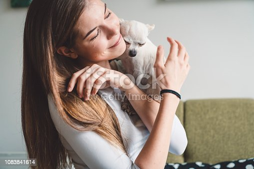 Beautiful young caucasian woman with brown hair holding a little cute white chihuahua in her arms. Cuddles and kisses. This small chihuahua is a boy, and is this girl's best friend! Dogs are such a loving creatures.