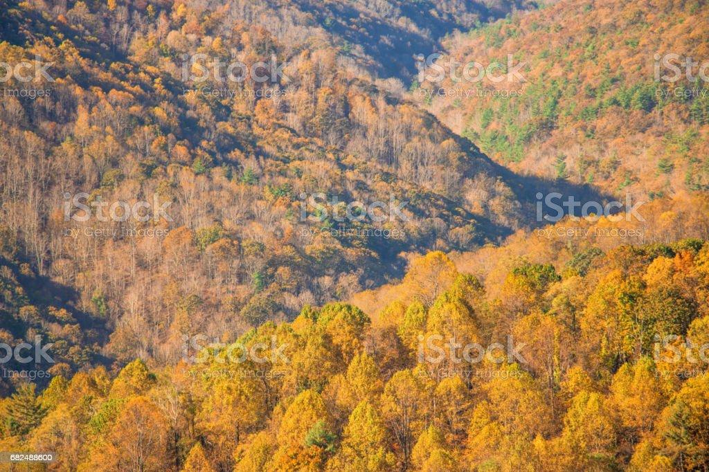 The mountain colorful autumn landscape. photo libre de droits