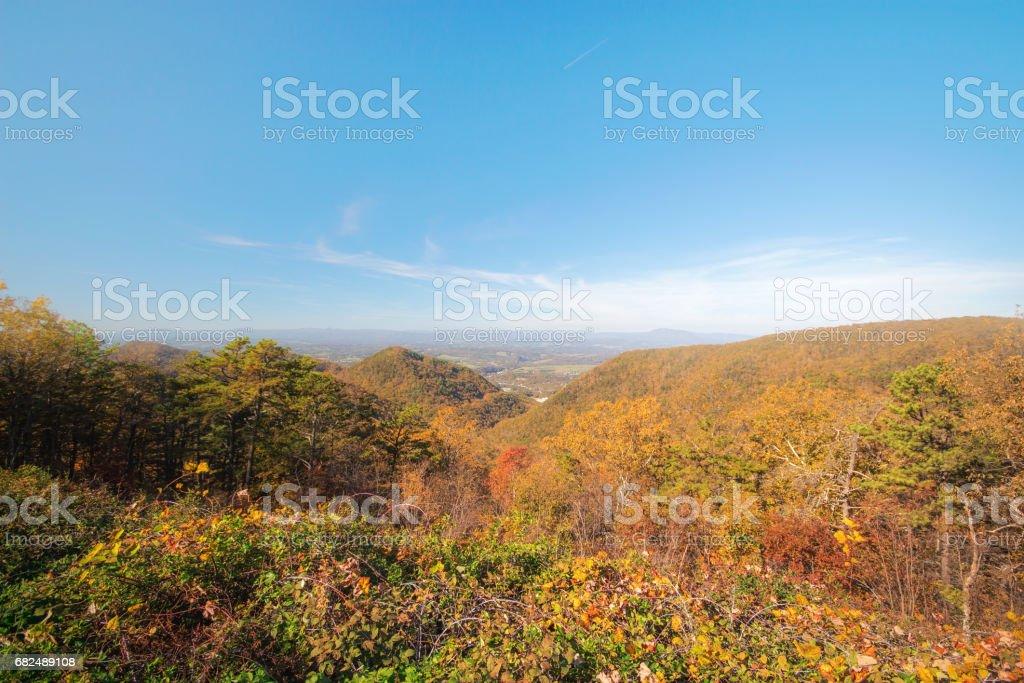 The mountain colorful autumn landscape. Lizenzfreies stock-foto
