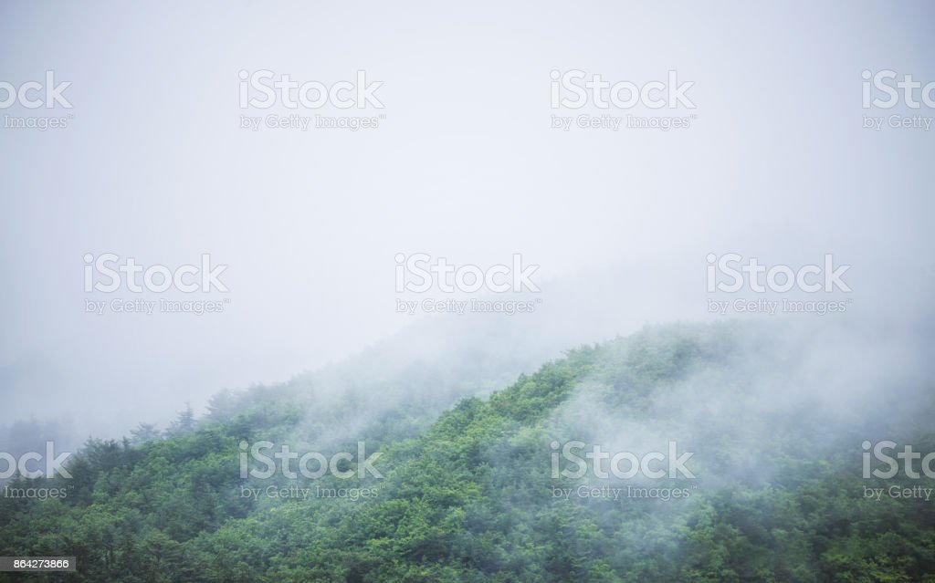 The mountain which is surrounded for morning fog royalty-free stock photo