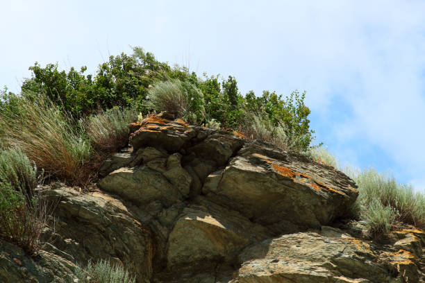 The mountainous landscape. stock photo