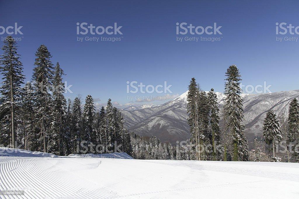 The mountains in Krasnaya Polyana, Sochi, Russia stock photo