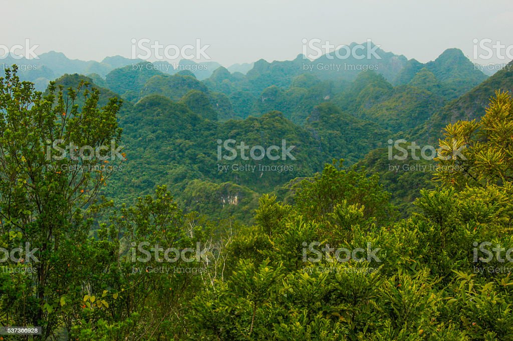 The mountains of Cat Ba Island stock photo