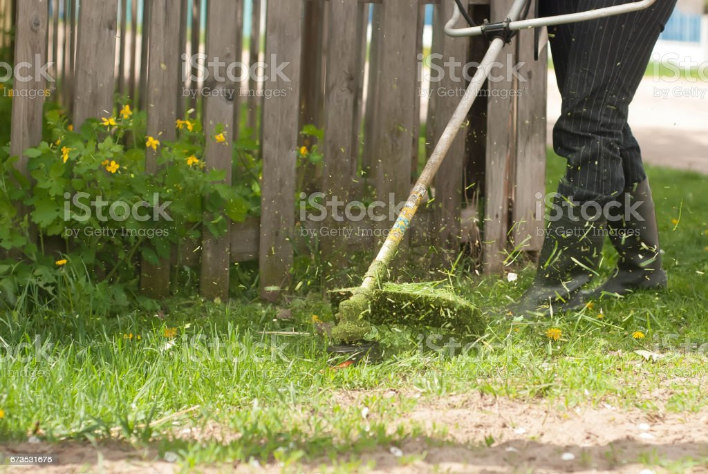 The mowing of grass, close-up, stock photo