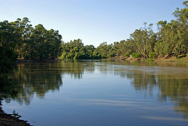 The Murray River stock photo