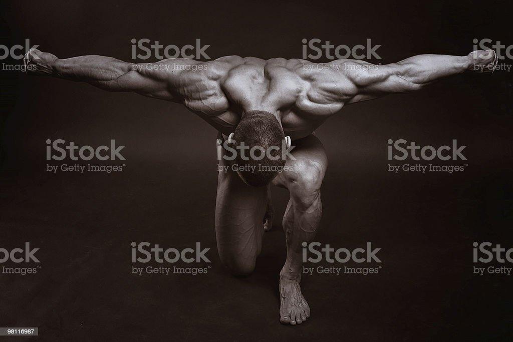 Il maschio Muscoloso foto stock royalty-free