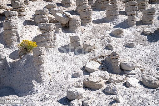 Estimates hold that there are up to 5,000 of the columns within a 2- to 3-square-mile area to the east of Crowley Lake. They appear in clusters of varying shapes and sizes.  California.
