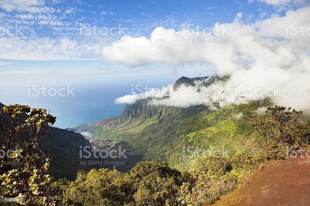 The Na Pali Coast View From the Waimea Canyon stock photo