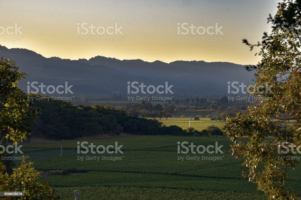 The Napa Valley stock photo