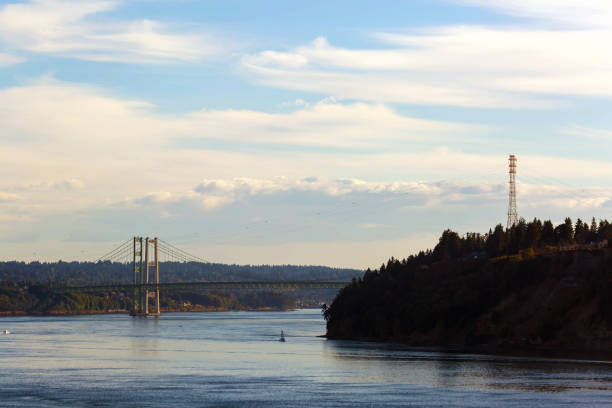 The Narrows Bridge from Point Defiance in Tacoma Washington State The Narrows Bridge from Point Defiance in Tacoma Washington State USA America gig harbor stock pictures, royalty-free photos & images