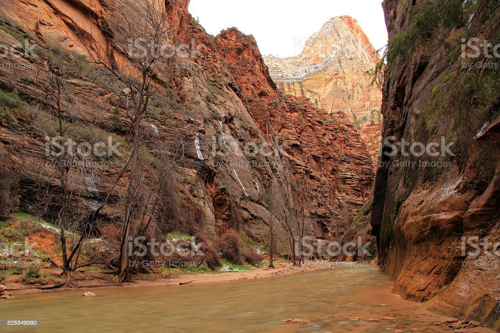The Narrows in Zion National Park stock photo