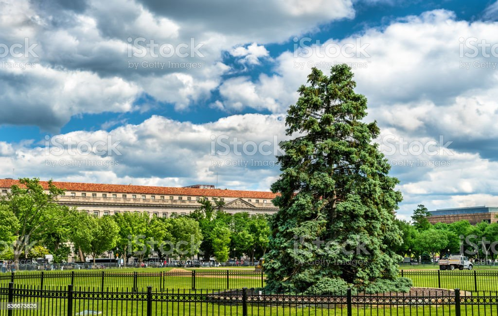 The National Christmas Tree in front of the White House - Washington, DC stock photo