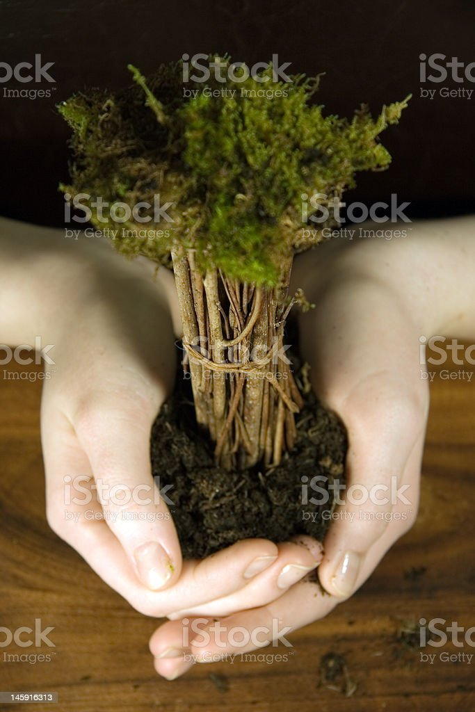 the natural is in our hands royalty-free stock photo