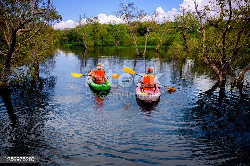 tourist traveller or researcher oar action paddle of boat canoe kayaking in the fresh water river lake to discover and explore the nature of botanical garden tropical zone