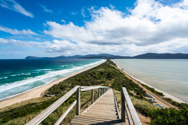 the neck in bruny island - tasmania stock pictures, royalty-free photos & images