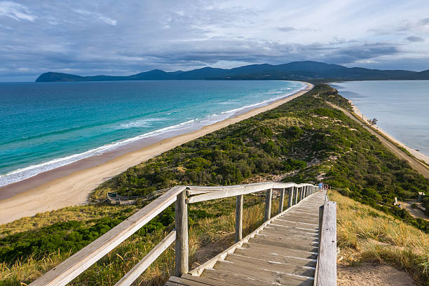 the neck of bruny island, tasmania - tasmania stock pictures, royalty-free photos & images