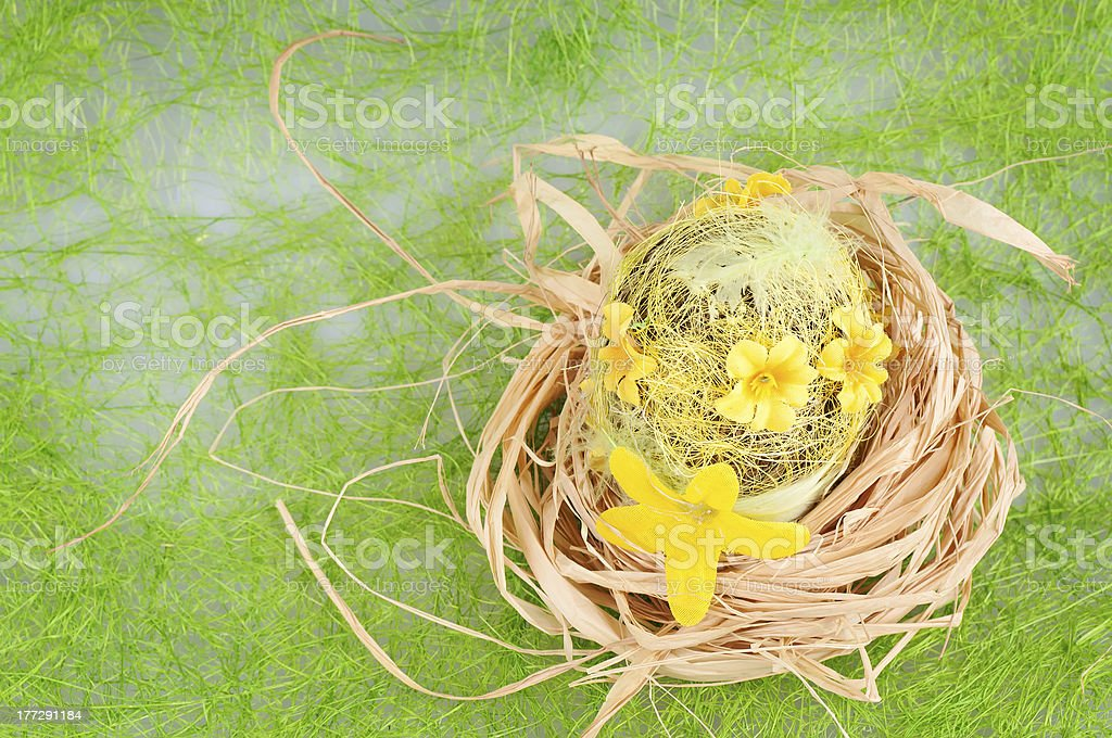 The nest royalty-free stock photo