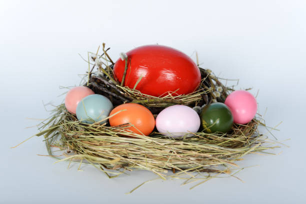 The nest with big ostrich and green, yellow, pink chicken easter eggs stock photo