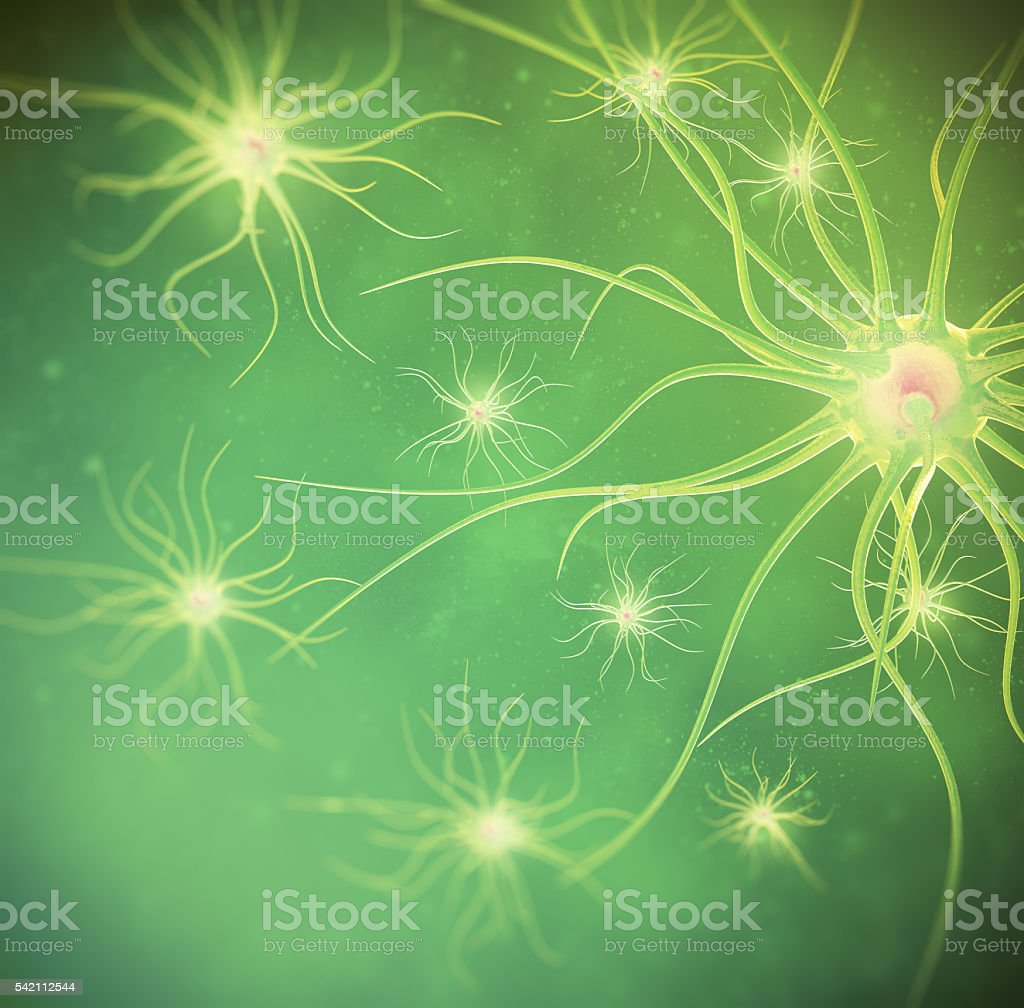 The neural network of the person on a green background stock photo