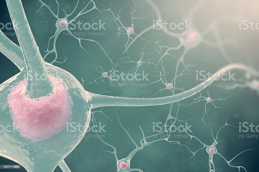 The neurons of the nervous system with the effect blurring stock photo