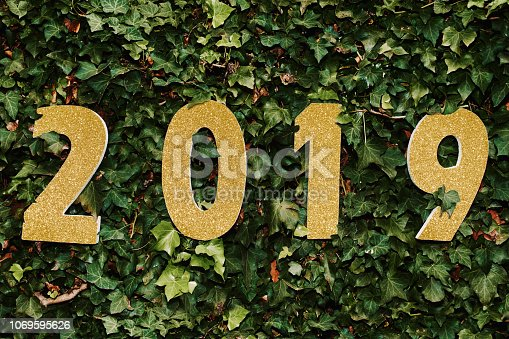 istock The new year brings a new start 1069595626