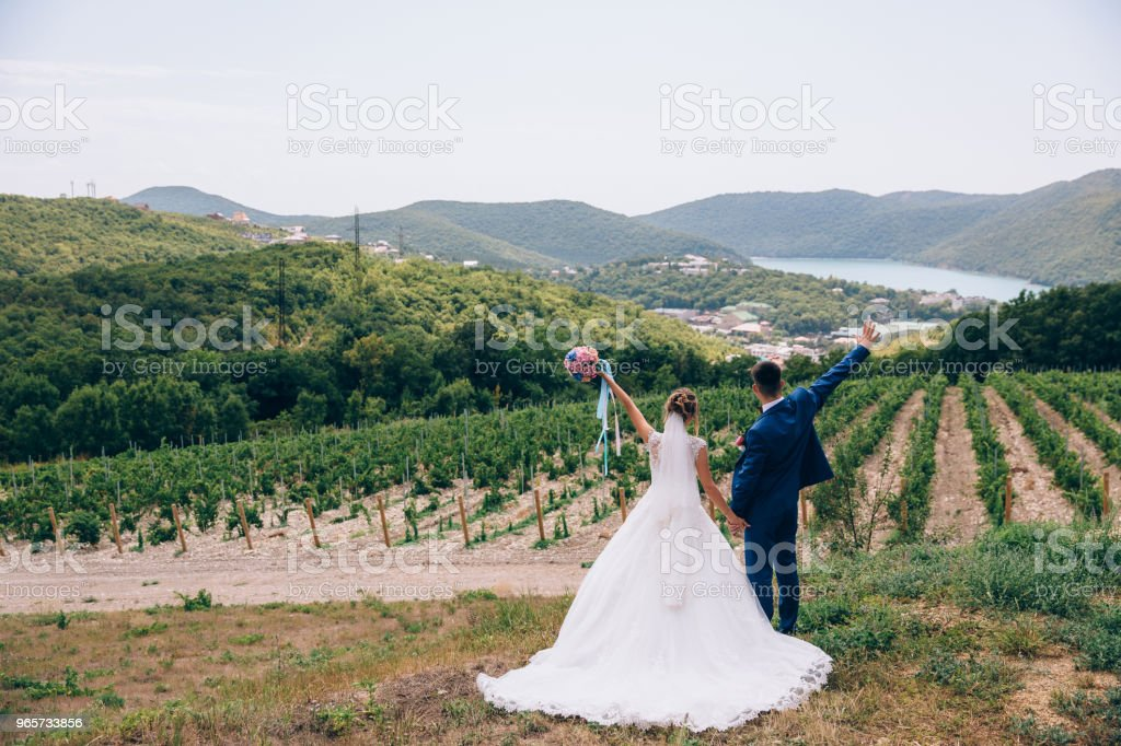 The newlyweds are happy to be together, hold each other's hands tightly and enjoy life. The bride and groom finally became husband and wife. Realization of desires and goals - Royalty-free Adult Stock Photo
