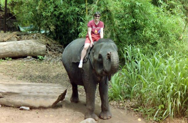 The nineties. A ride with an working elephant along the bank of the Mahaweli River. Kandy, Sri Lanka. stock photo