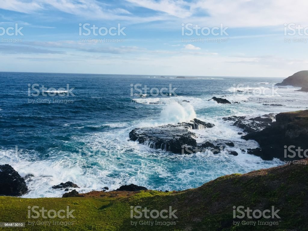 The Nobbies at Phillip Island, Victoria royalty-free stock photo