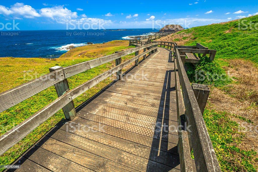 The Nobbies Phillip Island stock photo
