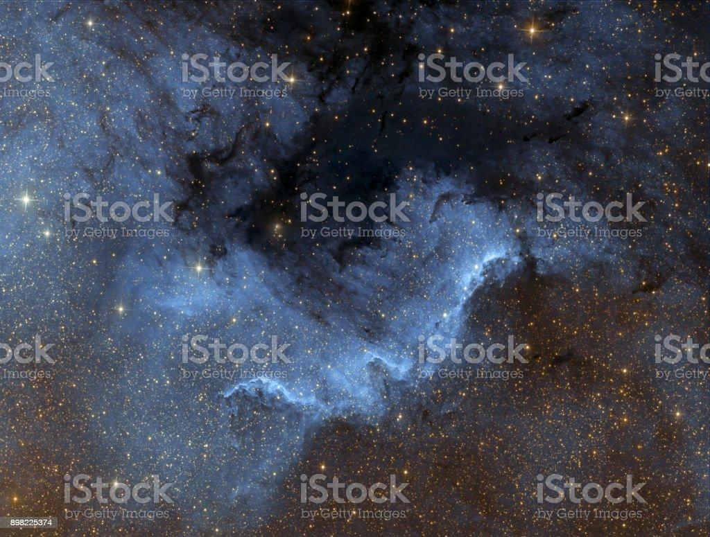Der Nordamerika-Nebel (NGC 7000) im Infrarot-Licht – Foto