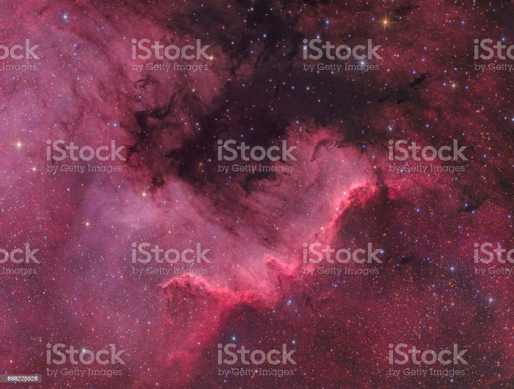 Der Nordamerika-Nebel (NGC 7000) im sichtbaren Licht – Foto