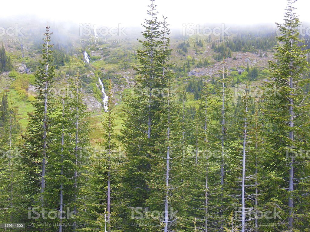 The North Cascades royalty-free stock photo