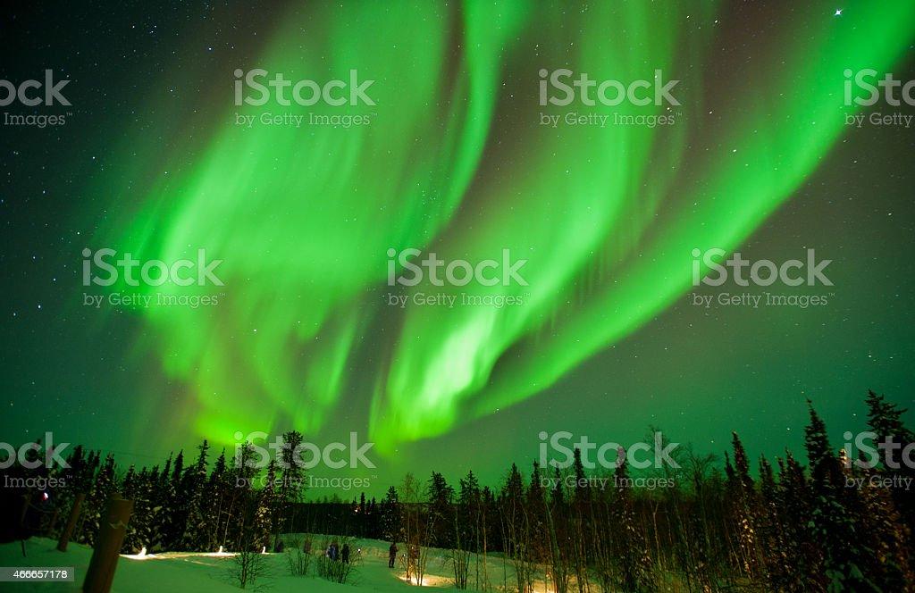 The northern lights stream across the arctic sky near Yellowknife stock photo