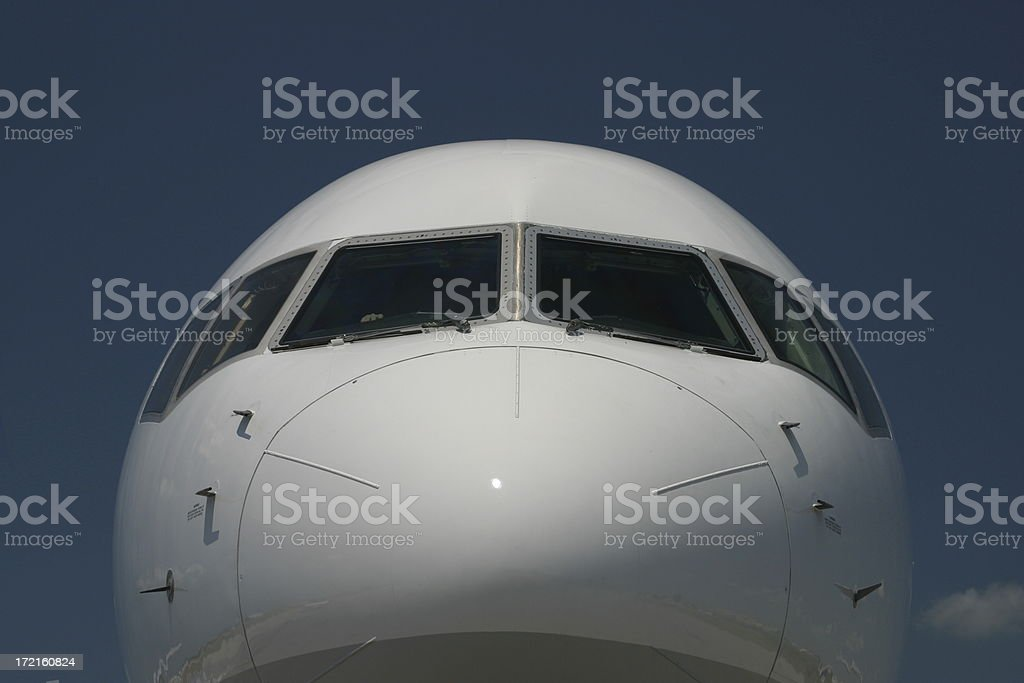 The Nose royalty-free stock photo