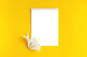 istock The notebook is isolated on a yellow background. 1197459600