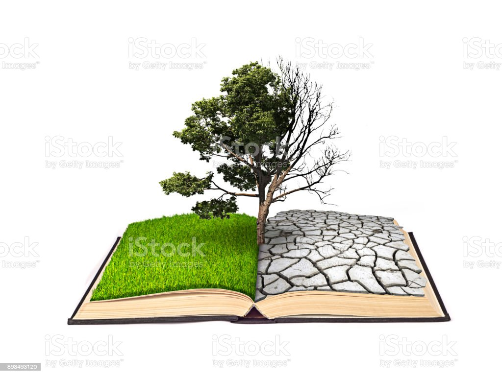 The notion of doubling. A dead tree on one side and a living tree on the other hand on a book with the same bipolarity stock photo