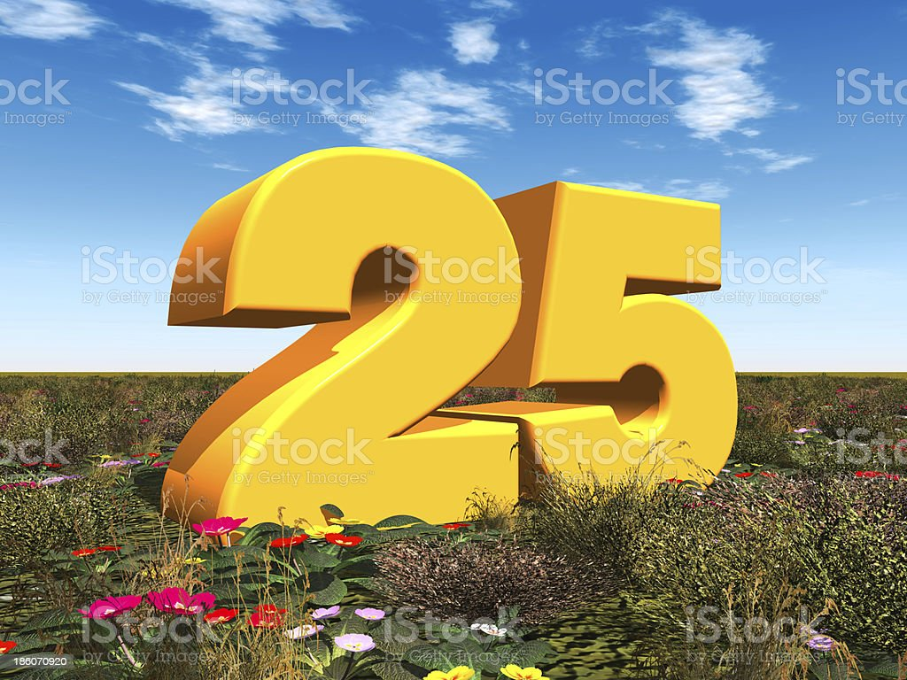 The Number 25 stock photo